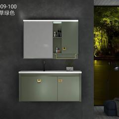 009-100 草绿色