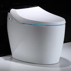031智能坐便器  马桶  自动翻圈 遥控操作 大屏显示 重力感应 臀部清洗