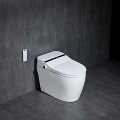 金丝丽 智能坐便器 JSL-001 白色 智能坐便器