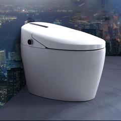 赛欧 8812  智能坐便器 马桶  超虹吸冲水 LED显屏 脚感冲水 无水箱即热式 300mm 6