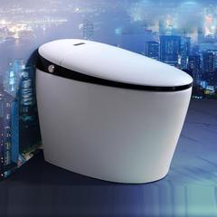 赛欧 8820 智能坐便器  全自动冲水系统  妇洗护理  脚感翻盖 无水箱即热式 300mm 68