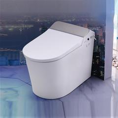 赛欧 SOA8  智能坐便器  马桶  内置水箱 超薄弧形喷杆  即热式 300mm 699x393