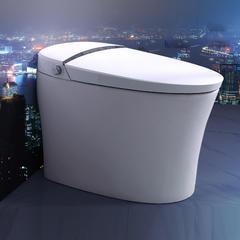 赛欧 SOE1 智能坐便器 无水箱即热式  座圈加热  智能除臭  喷头自洁  臀部清洗 300mm